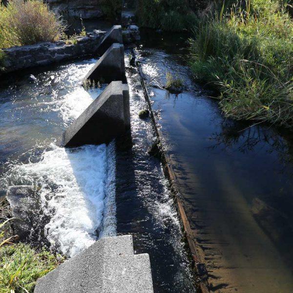 Cline Falls Dam Removal